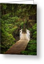 On The Trail Greeting Card by Carrie Cole