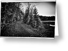 On the way to Cary Lake Greeting Card by David Patterson