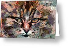 one more cat Greeting Card by Yury Malkov