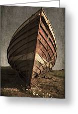 One Proud Boat Greeting Card by Svetlana Sewell