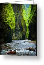 Oneonta River Gorge Greeting Card by Inge Johnsson