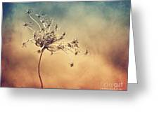 Only Greeting Card by Diana Kraleva