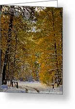Open Gate Greeting Card by Mitch Shindelbower