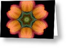 Orange Daylily Flower Mandala Greeting Card by David J Bookbinder
