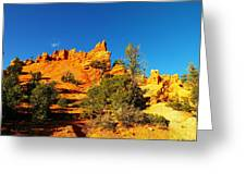 Orange Foreground A Blue Blue Sky  Greeting Card by Jeff Swan