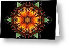Orange Gazania IIi Flower Mandala Greeting Card by David J Bookbinder
