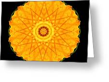 Orange Nasturtium Flower Mandala Greeting Card by David J Bookbinder