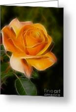 Orange Rose 6292-fractal Greeting Card by Gary Gingrich Galleries