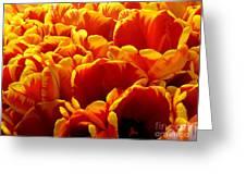 Orange Sea Greeting Card by Lauren Hunter