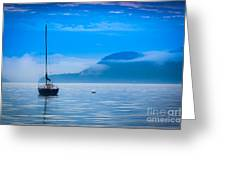 Orcas Sailboat Greeting Card by Inge Johnsson