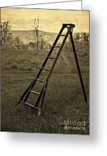 Orchard Ladder Greeting Card by Edward Fielding