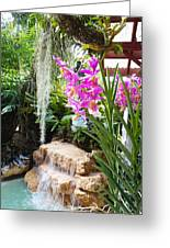 Orchid Garden Greeting Card by Carey Chen