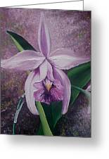 Orchid Lalia Greeting Card by Karin  Dawn Kelshall- Best