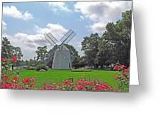 Orleans Windmill Greeting Card by Barbara McDevitt