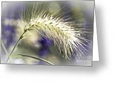 Ornamental Sweet Grass Greeting Card by Heiko Koehrer-Wagner