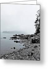 Otter Cliffs Greeting Card by Joann Vitali