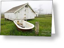 Outdoor Bath At The Old Pierce Point Ranch In Foggy Point Reyes California 5d28136 Greeting Card by Wingsdomain Art and Photography