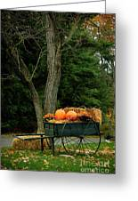Outdoor Fall Halloween Decorations Greeting Card by Amy Cicconi