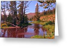 Outstanding Yellowstone National Park Greeting Card by John Malone
