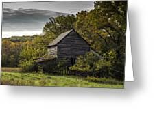 Overgrown Greeting Card by Amber Kresge