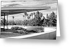 Overhang Bw Palm Springs Greeting Card by William Dey