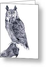 Owl Greeting Card by Lucy D