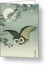Owl - Moon - Cherry Blossoms Greeting Card by Pg Reproductions