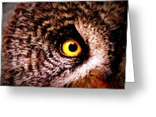 Owl's Eye Greeting Card by Ramona Johnston