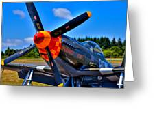 P-51 Mustang - Speedball Alice Greeting Card by David Patterson