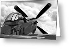 P51 In Clouds Greeting Card by Remy NININ