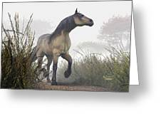 Pale Horse In The Mist Greeting Card by Daniel Eskridge