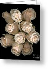Pale Roses Greeting Card by Jacqui Martin