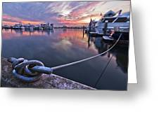 Palm Beach Harbor Greeting Card by Debra and Dave Vanderlaan