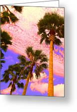 Palm In The Clouds Greeting Card by Ann Johndro-Collins