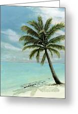 Palm Tree Study Greeting Card by Cecilia  Brendel