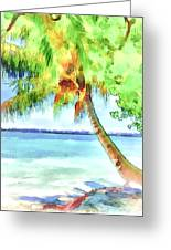 Palm Tree Greeting Card by Yury Malkov