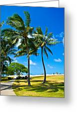 Palm Trees In The Park Greeting Card by Matt Radcliffe