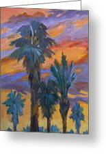 Palms And Sunset Greeting Card by Diane McClary