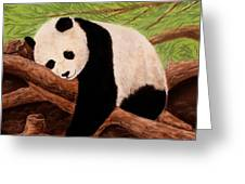Panda Greeting Card by Anastasiya Malakhova