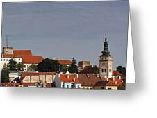 panorama - Mikulov castle Greeting Card by Michal Boubin