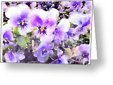 Pansies Watercolor Greeting Card by John Edwards