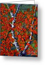 Paper White Birch Reflections Greeting Card by Janine Riley