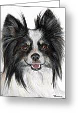 Papillon Painting Greeting Card by Kate Sumners