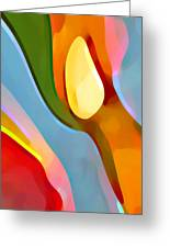 Paradise Found 6 Greeting Card by Amy Vangsgard