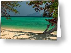 Paradise Found Greeting Card by Adrian Evans