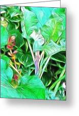 Paradise Greeting Card by Kathie McCurdy