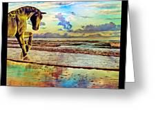 Paradise Sunset Greeting Card by Betsy C  Knapp