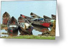 Parking Boats Greeting Card by Jola Martysz