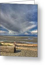 Parksville Beach - Low Tide Greeting Card by Randy Hall