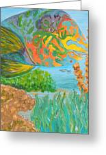 Parrotfish In The Coral Greeting Card by Connie Campbell Rosenthal
